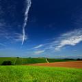 Photos: 大空と広い大地