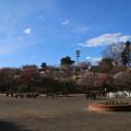 Photos: 梅林_公園 D7805