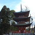 Photos: 三重塔_布施弁 F4510