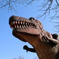 恐竜_公園 D7929