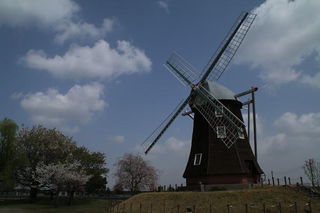 風車_公園 D7992