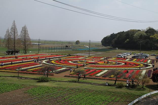 あけぼの山公園 D8029