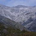 Photos: 初雪の山