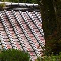 桜飾りの屋根