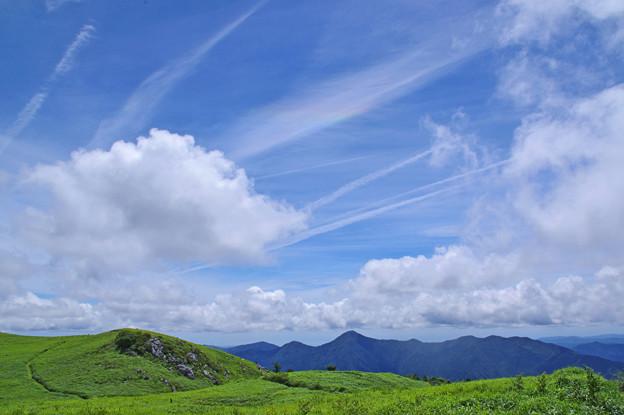 Photos: 夏の高原