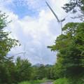Photos: 風車の道