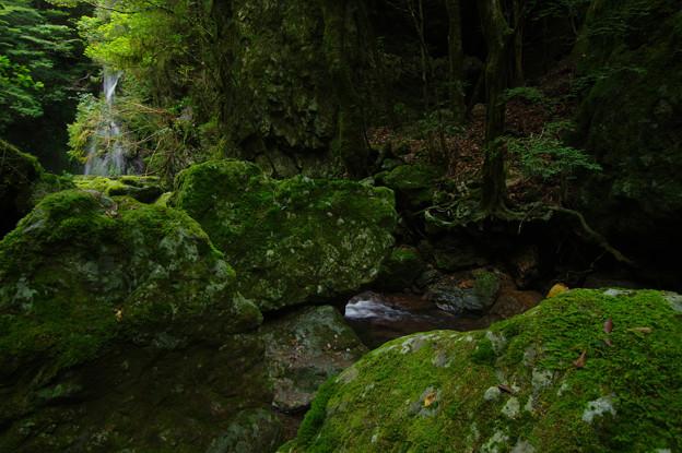 Photos: 滝に接近中