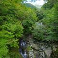 Photos: 足谷川より