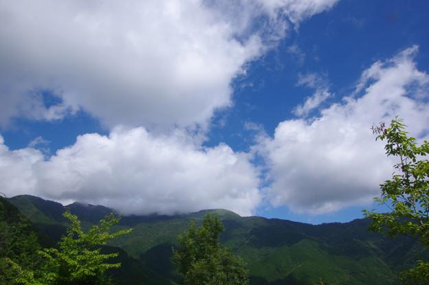 Photos: 白雲の山並