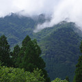 Photos: 雲の峰