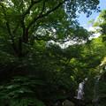 長又川の滝