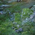 海川谷東俣川