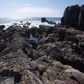 室戸岬の岩磯