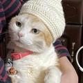 ベビーキャップが編み上がった