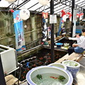 Photos: 金魚坂の金魚釣り