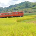 Photos: 赤い電車