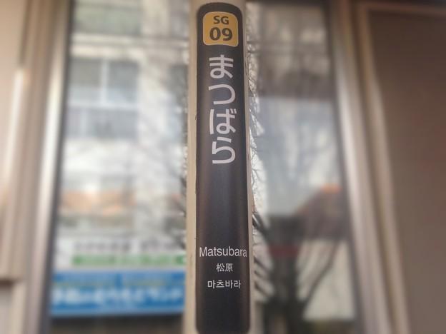 SG09 松原 Matsubara