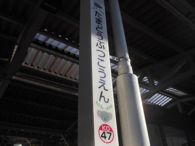 KO47 多摩動物公園 Tama-Dōbutsukōen
