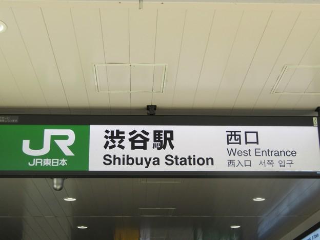 渋谷 Shibuya