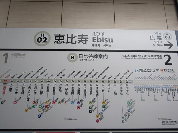 H02 恵比寿 Ebisu