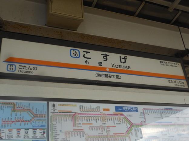 TS10 小菅 Kosuge