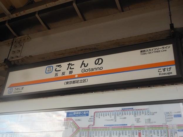 TS11 五反野 Gottanno