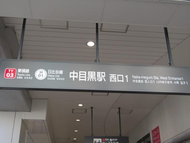 TY03/H01 中目黒 Naka-Meguro