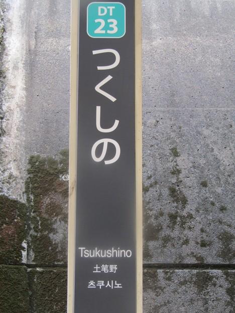 DT23 つくし野 Tsukushino