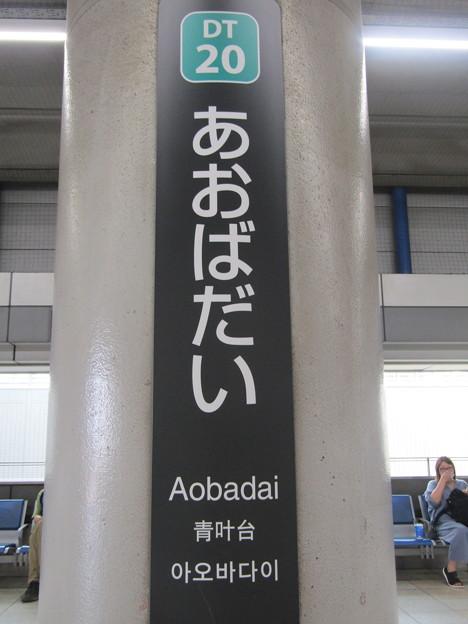 DT20 青葉台 Aobadai