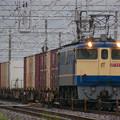 P1090953-1