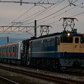 P1100168-1