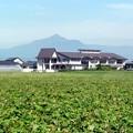 朝の霧島山
