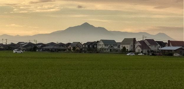 夕方の霧島山