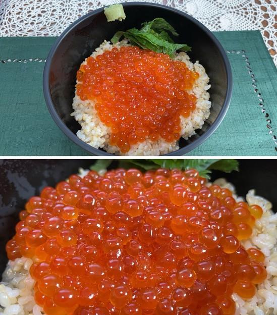 北海道 秋鮭いくらの醤油漬け