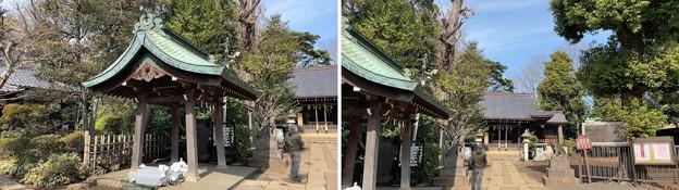 志村城(城山熊野神社。板橋区)境内・手水舎
