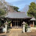 志村城(城山熊野神社。板橋区)拝殿
