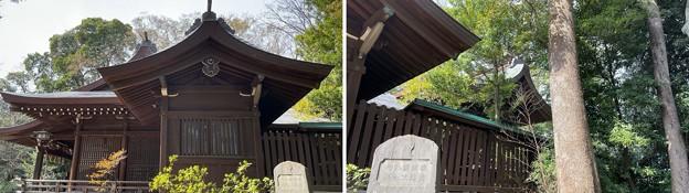 志村城(城山熊野神社。板橋区)拝殿・本殿