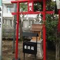 洲崎神社(江東区)辯天