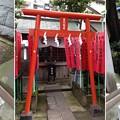 洲崎神社(江東区)豊川稲荷