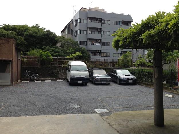 洲崎神社(江東区)弁天池跡