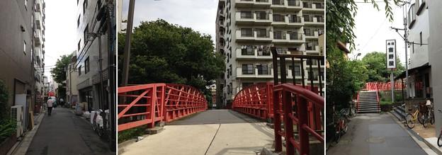 大横川 新田橋(江東区)北詰・南詰