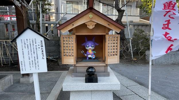 洲崎神社(江東区)玉の輿たまちゃん……