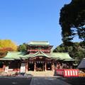 富岡八幡宮(江東区)社殿(本宮)