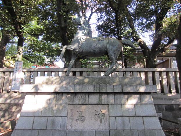 富岡八幡宮(江東区)神馬像