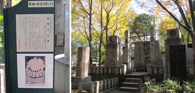 富岡八幡宮(江東区)横綱力士碑