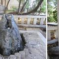 富岡八幡宮(江東区)お手水所