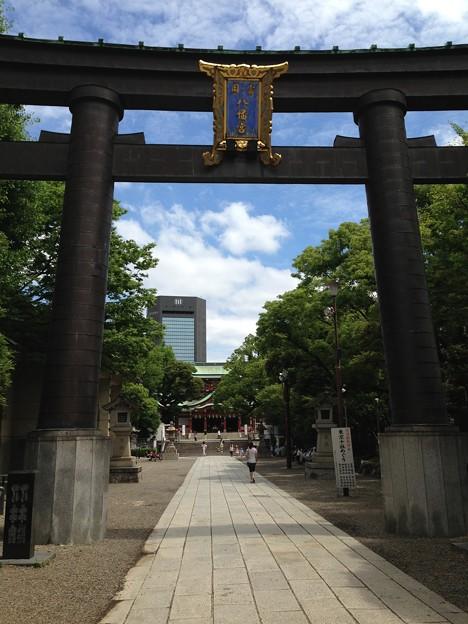 富岡八幡宮(江東区)大鳥居