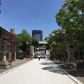 富岡八幡宮(江東区)参道