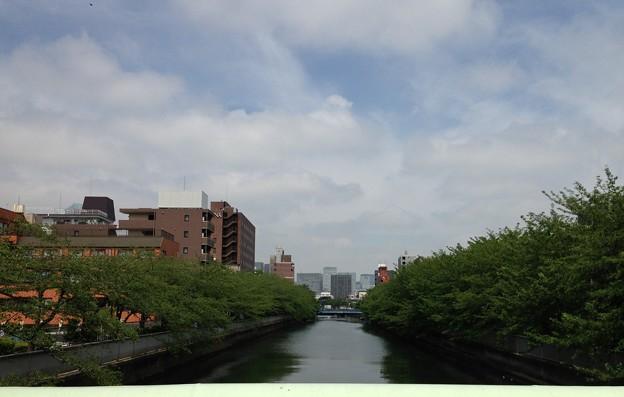 大横川 巴橋上より西(江東区)