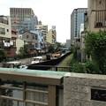 Photos: 巽橋南詰東側より北(江東区永代)